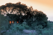 LIttle Bush Camp - Exterior View-1200px