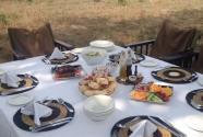 Guests at SC enjoyed a lovely picnic lunch - Lindie Reiche.jpg