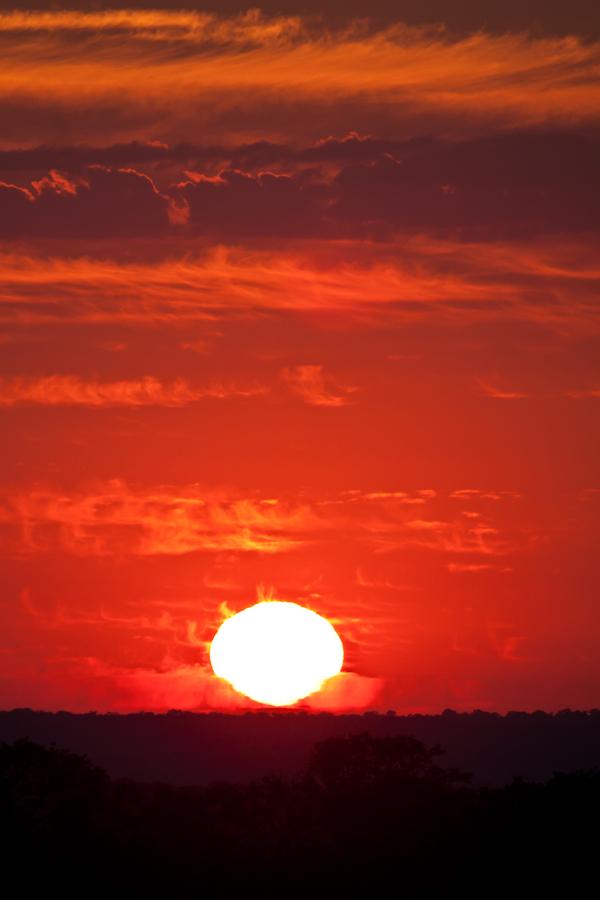 safri sunset at sabi sabi