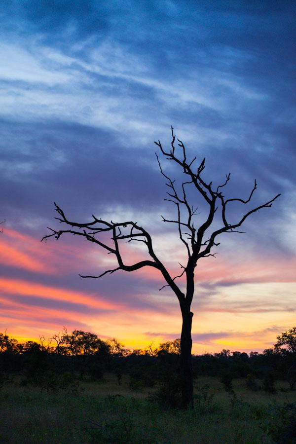 Nyati Dam Sunset