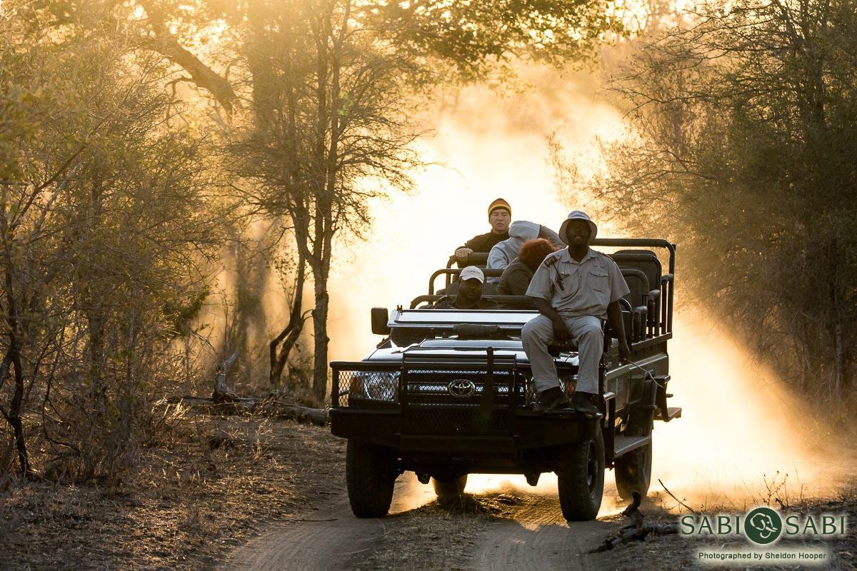 Why you need to come (back) on Safari