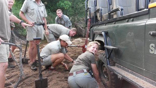 Sabi Sabi Safari Rangers