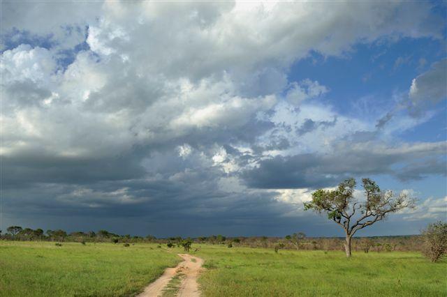 african-summer-sky