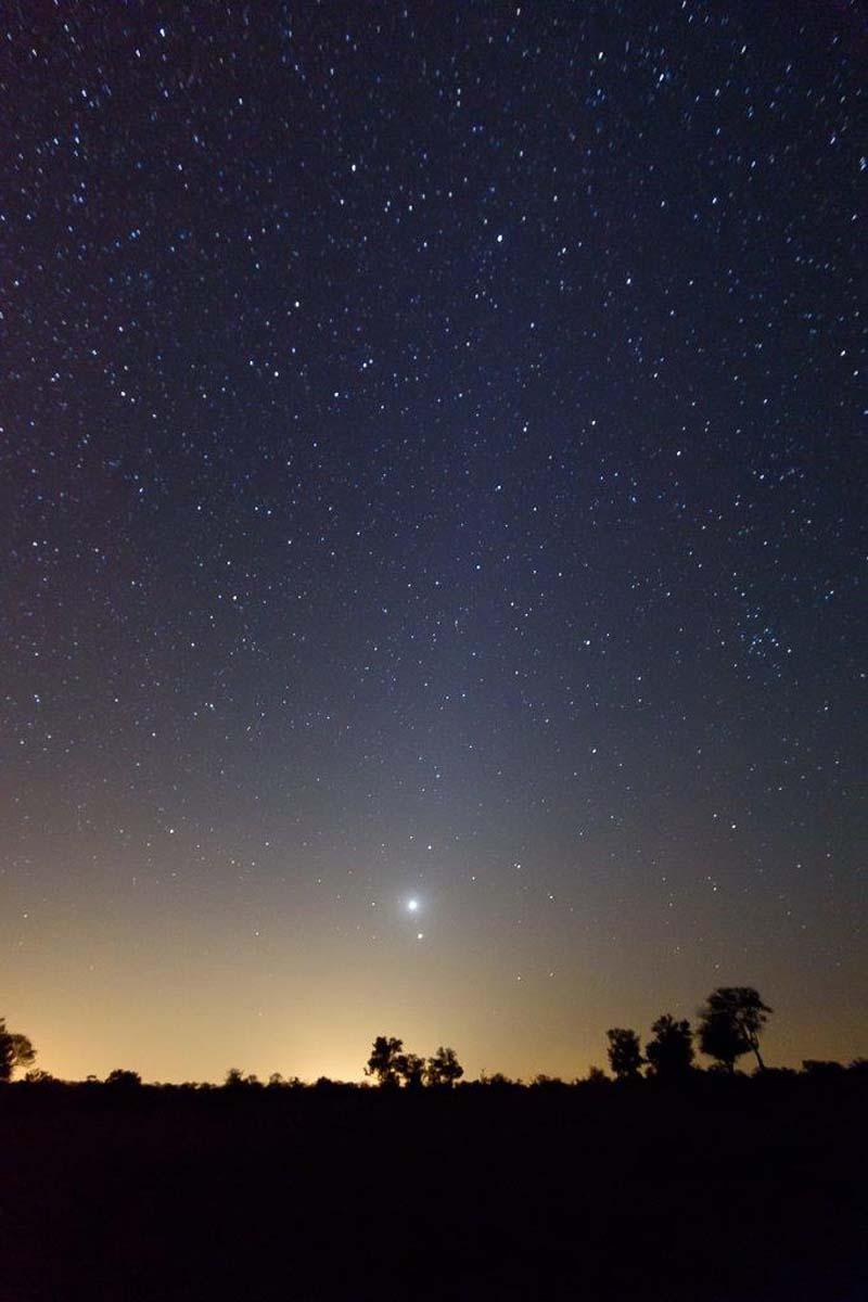 Mike Palmer - Stars Tingala-5
