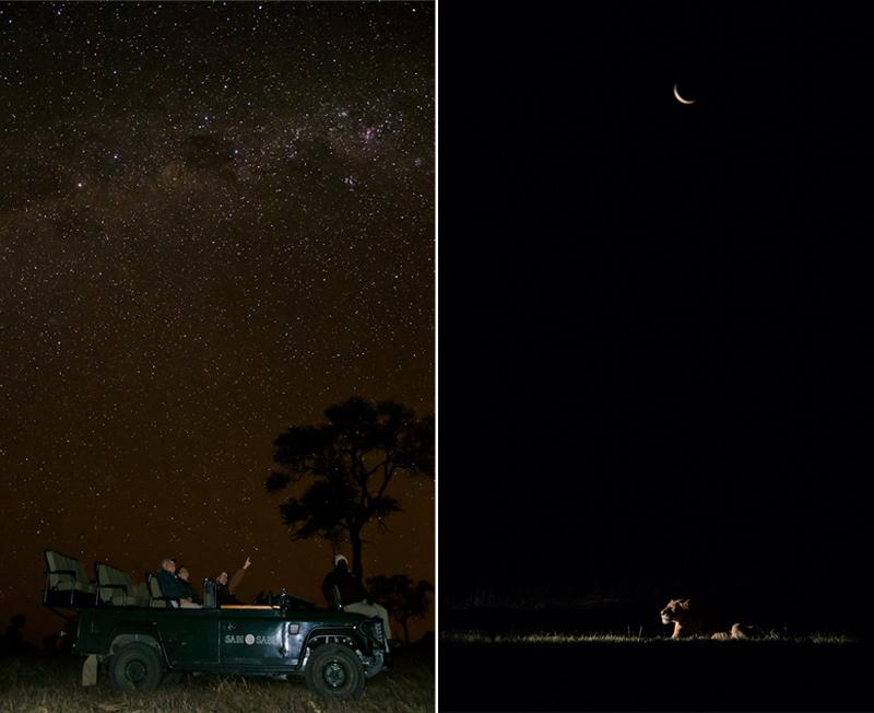 night safari at Sabi Sabi
