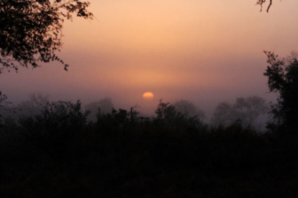 sunrise at sabi sabi