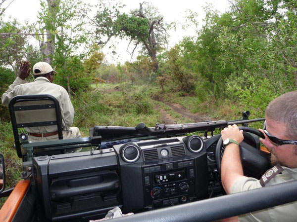 sabi sabi ranger and tracker