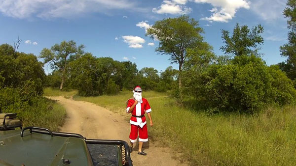 christmas at Sabi Sabi