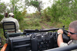 guests on safari at sabi sabi private game reserve