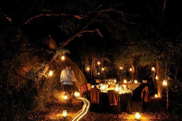 Night Bush Dinner