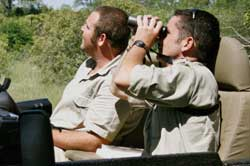 birding day at sabi sabi