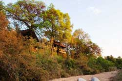 selati camp on the river bed